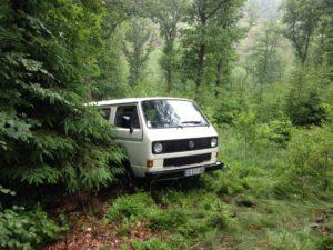 Een T3 bus in het bos